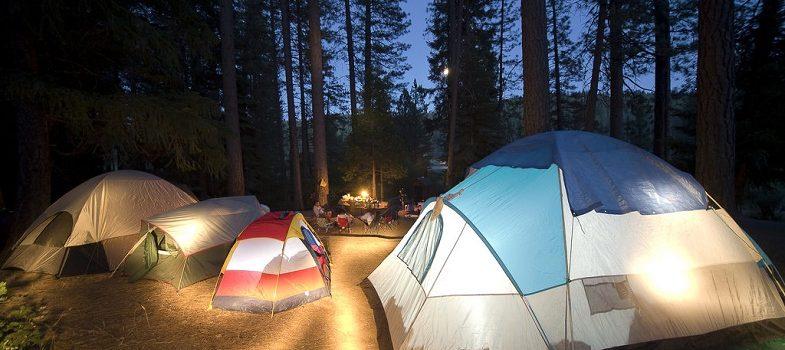 Camp lights